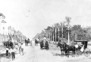 1893: Ocean Boulevard which is now known as Seabreeze Boulevard