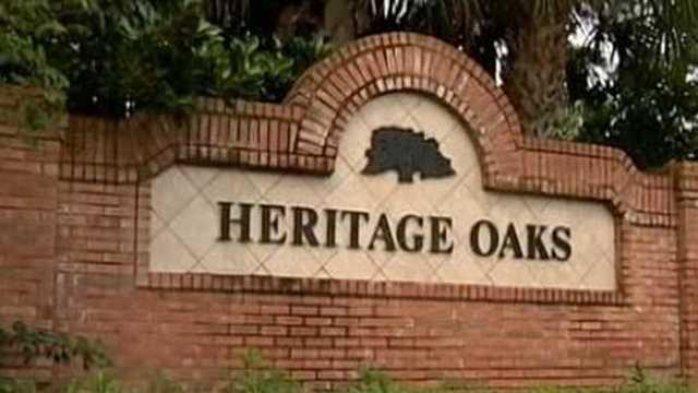 Heritage oaks