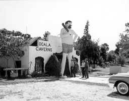 """Ocala (Marion County): The literal meaning of this Indian word is """"heavily clouded.""""The picture shows the Ocala Caverns in 1961."""