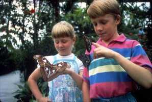 1993: Boy - Michael, Girl - Ashley