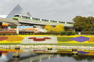 Disney will celebrate 20 years of the International Flower & Garden Festival when it begins at Epcot in March.