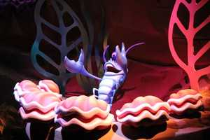 There are 183 characters in Under the Sea ~ Journey of the Little Mermaid.