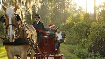 It's still the most wonderful time of the year at Walt Disney World. See some of the fun festivities still happening at the parks with the following list.