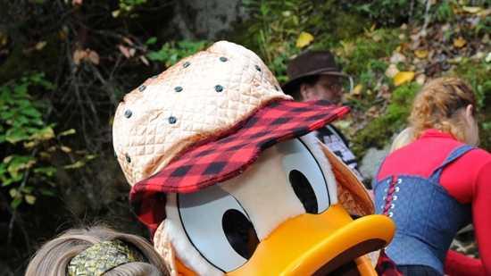 DuckDisney.jpg