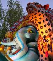 Tigers, the national animal of India, sit on the back of the float next to the Hindu deity Ganesh.