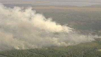 A prescribed burn in Volusia County jumped the line and firefighters worked to put it out Monday.