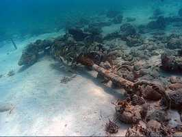 """The state of Florida considers 11 shipwrecks off the state's coasts underwater archaeological preserves.  These """"museums in the sea"""" range from battleships to steamers and Spanish galleons."""