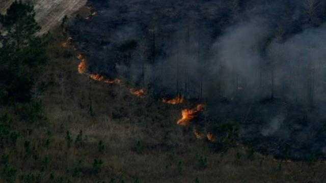 Brush fire in Ormond Beach 1.jpg