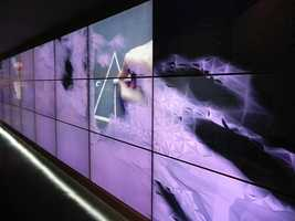 THINK's 40-foot gesture wall is sure to catch the eyes of all who enter Innoventions West.