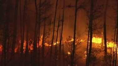 Ormond fire.jpg