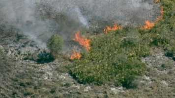 Fire crews in Osceola County are working a 75-acre brush fire in the area that destroyed an RV and a shed.