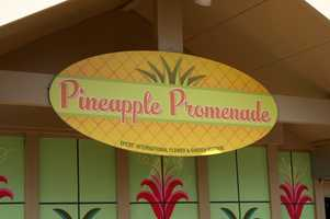 See the menus for the new food and drink kiosks at Epcot's Flower and Garden festival along with some comments from Chef Jens Dahlmann.Pineapple PromenadeWorld Showcase Promenade, Canada sideFood:Pineapple Dole® Whip Soft ServeDole® Whip with Siesta Key Spiced RumPineapple Upside Down Cake, featuring Dole® PineappleDole® Pineapple Fruit CupTo drink:Frozen Desert Violet Lemonade - non alcoholicSamuel Adams® Cream StoutDasani WaterSeagram's Orange Citrus Sparkling WaterMinute Maid® Light LemonadeHonest Kids® Super Fruit Punch