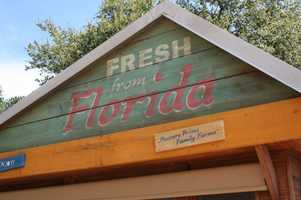"""""""Florida Fresh is probably my second favorite kiosk after barbeque, because it's all local produce. We have a beautiful watermelon salad with pickled red onions, feta cheese and a balsamic reduction. It's sweet, savory, crunchy, cold. It's just great.""""Fresh from FloridaWorld Showcase Promenade, Mexico sideFood:-Watermelon Salad with pickled Red Onions, BW Baby Arugula, Feta Cheese and Balsamic Reduction (Try It Selection)-Shrimp and Stone Ground Grits with Andouille Sausage, Sweet Corn, Tomatoes, and Cilantro-Angel Food Cake with macerated Florida Berries (Try It Selection)Drink:-Hot Sun Tomato Wine from Florida Orange Groves-40 Karat Carrot Wine from Florida Orange Groves-Orange Blossom Pilsner from Orange Blossom in Orlando, FL-Strawberry Slush - non alcoholic-Dasani Water-Seagram's Orange Citrus Sparkling Water-Minute Maid® Light Lemonade-Honest Kids® Super Fruit Punch"""