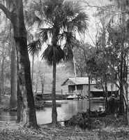 Wekiwa Springs State Park (Apopka) - 1885