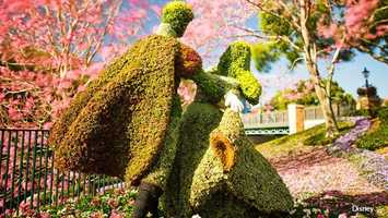 Flower and Garden Festival: Epcot's International Flower & Garden Festival continues this weekend.
