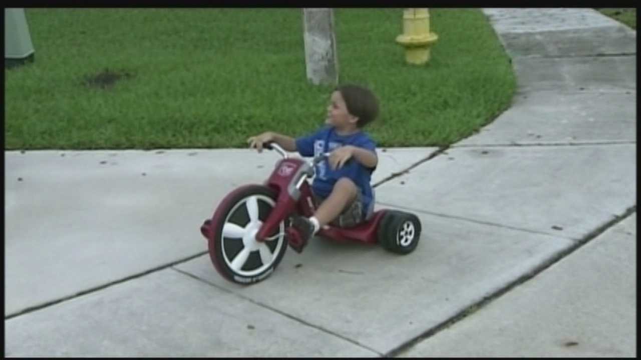 A Florida boy is safe after his father and a good Samaritan rescued him from the jaws of alligator.