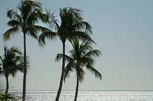 7. Fort Myers +7.3% (population: 66,789)