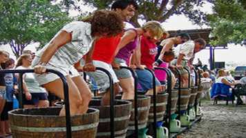 Harvest Festival: Lakeridge Winery is throwing it's 23rd annual flagship event. A full weekend of wine, beer, food and live music benefits Cornerstone Hospice of Lake and Sumter counties. Admission is $2.