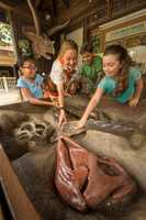 Activities range from habitats and animal nutrition at Conservation Station to fossils and signaling in DinoLand U.S.A.