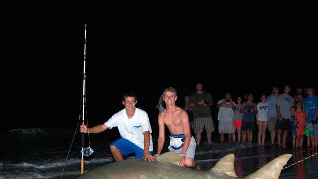 Sawfish catch 1.JPG