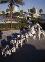 """The first official wedding at Disney's Wedding Pavilion was held in June of 1995 and appeared on """"Weddings of a Lifetime,"""" a television special on the Lifetime network."""