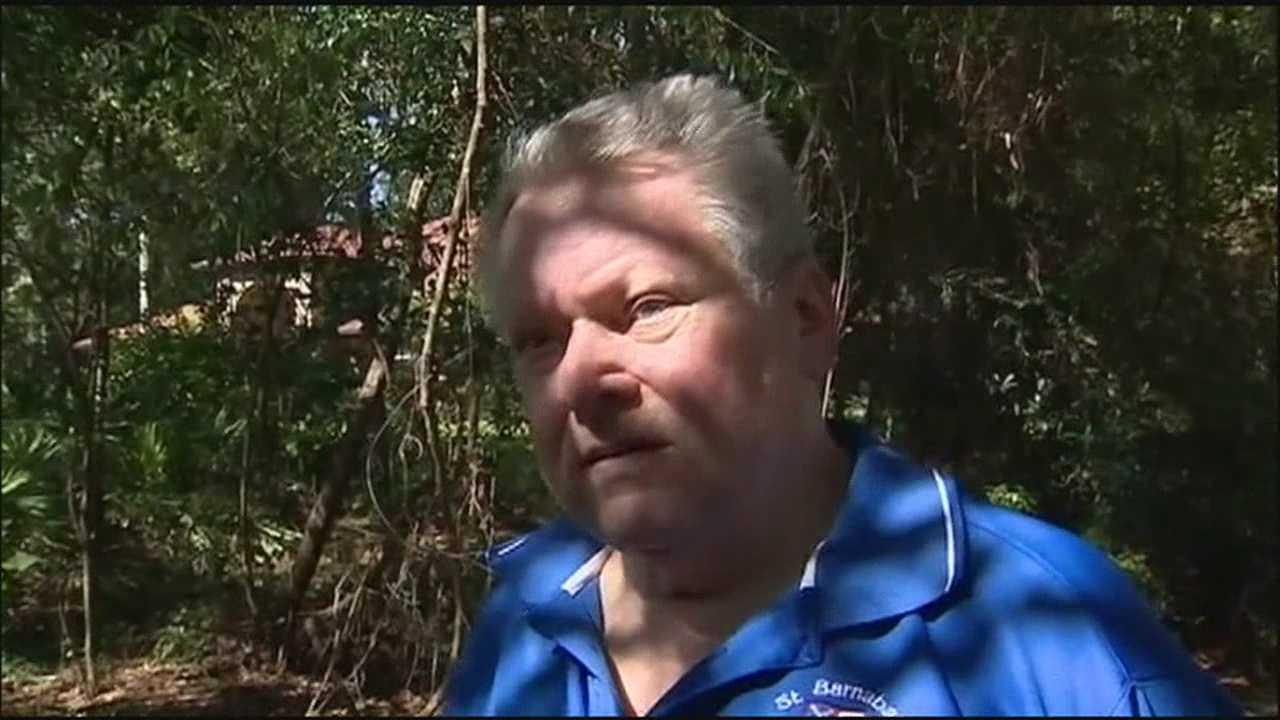 Homeowner  fires gun at burglars