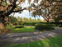 Huge oaks surround the circle driveway. This property is perfect for nature lovers.