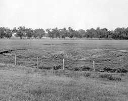 Two sinkholes formed in Bartow (Date not known).