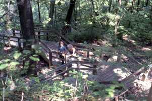 Visitors enjoying the Devil's Millhopper sinkhole (Date not known).