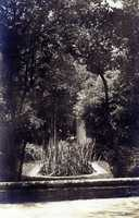 A small glimpse of the Vizcaya garden.