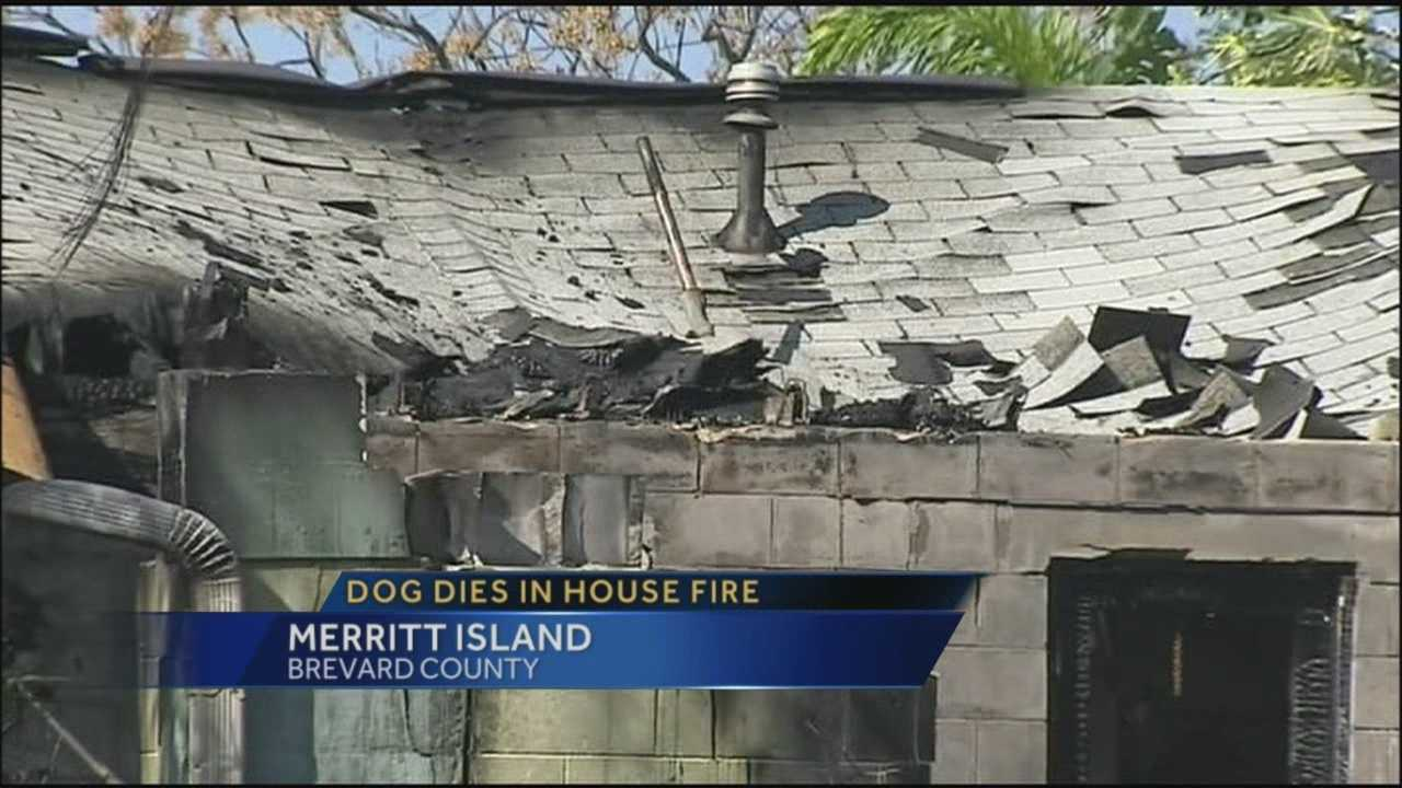 Two homes go up in flames