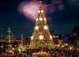 The Disney Parks Blog is getting us in the mood for Christmas, showing off their Christmas trees from around the world. See 20 of them here, starting with...1. American Waterfront at Tokyo DisneySea