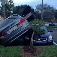 Martin County sheriff's traffic deputies are investigating the cause of this parking lot crash.