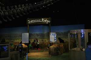 Audience members can dig for dinosaur fossils in Jurassic Ridge.