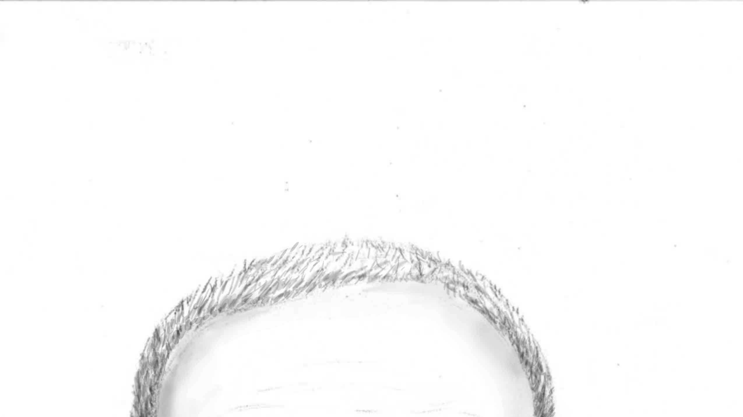 kissimmee suspicious incident sketch