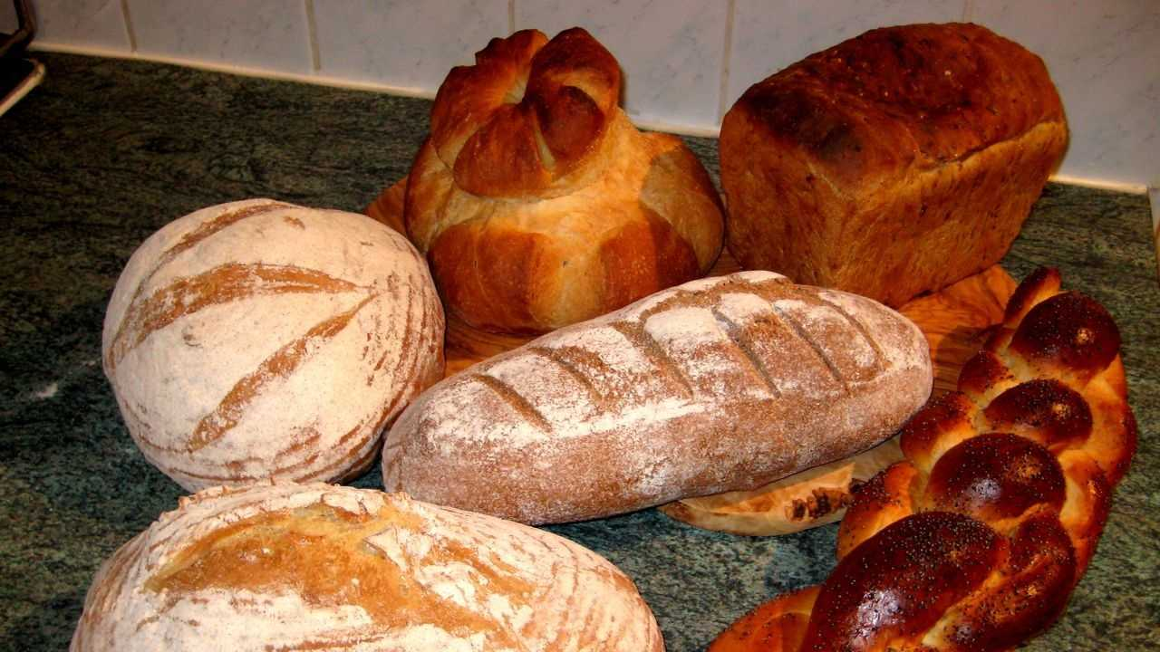 13_bread_dave pullig.jpg