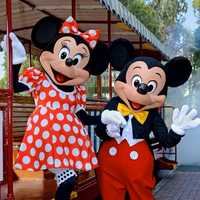 How would you caption this picture? Submit your caption at the Walt Disney World Updates Facebook page.