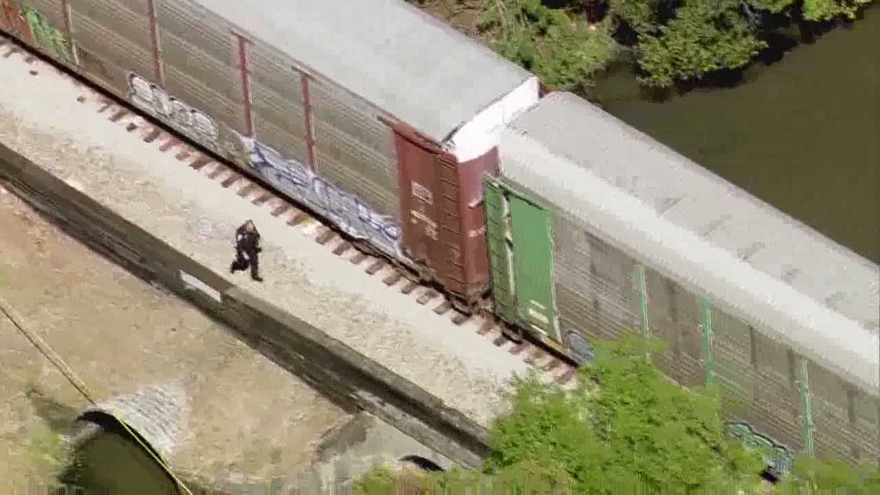 Train hits pedestrian 2.jpg