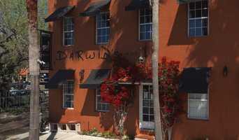 Darwin's on 4th - 1525 4th Street, Sarasota