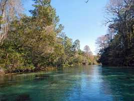 A beautiful shot of Weeki Wachee in 2014.