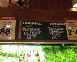 Organic Romaine Hearts at Fresh Market: $2.49