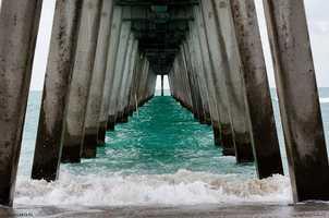 37: South Venice - 26.4 percent