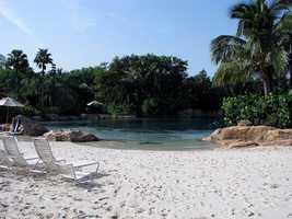 1. Discovery Cove -- Orlando, Fla.