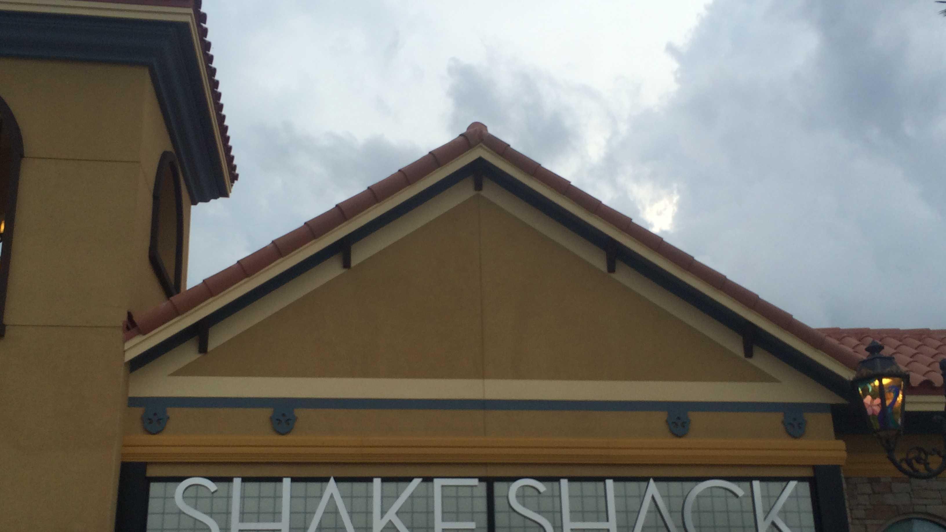 shake shack 3.jpg