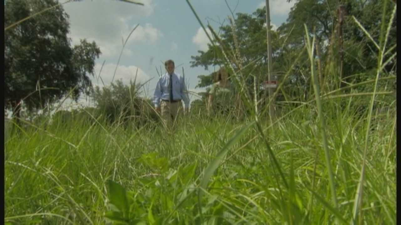 A dispute over mowing grass had dozens of people threatened with fines and citations in Winter Park, but the problem was solved when WESH 2 News started asking questions.