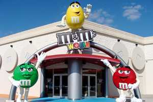 1. M&M's World OrlandoLocated in the Florida Mall, M&M's World brings guests a fully interactive and colorful M&M's experience to life. Activities include a Color Mood Analyzer and a NASCAR entertainment zone. Hours: Monday - Saturday 10 a.m. - 10 p.m., Sunday 11 a.m. - 8 p.m.Address: 8001 S. Orange Blossom Trail, Suite 1132, Orlando, FL 32089