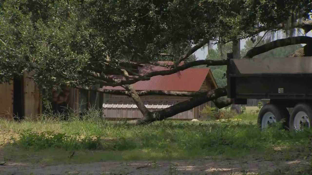 Deputies say thieves stole pricey farm equipment that was donated for 4-H clubs and schools in Marion County.