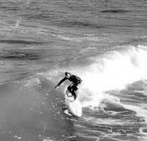 1983: Surf's up!