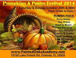 7. Painted Oaks Academy Pumpkins & Ponies Festival When: Oct. 25 and 26, 10 a.m. to 6 p.m. Where: 15100 Lake Pickett Rd., Orlando, FL 32820Admission: FREEActivities: Pony rides, hay rides, food, music, face painting, bounce houses, games, local vendors