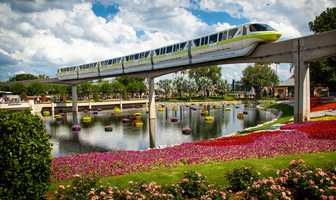 2. Walt Disney World Monorail and Water TaxiAlthough there is an admission to visit the Walt Disney World parks, riding the Monorail and Water Taxi is free. So if you're wanting to take pictures from outside the parks, see the hotels and just take in the views of the property, this may interest you.